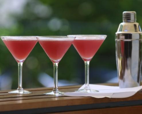 Sommerparty: Deine Gartenparty im Sommer Cocktailcatering in Berlin, Deutschland und Europa