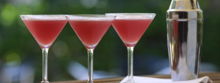 Premium Cocktailcatering in Berlin, Deutschland und Europa