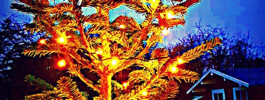 Weihnachtsfeiern, Firmenevents, Cocktailcatering
